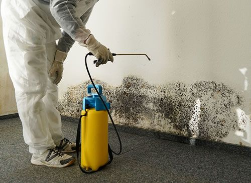 CLEANING VS DISINFECTING: 5 TIPS TO DISINFECT YOUR HOME