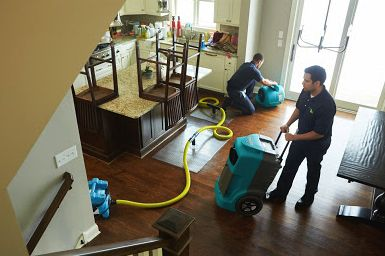 Burst Pipe Water Damage Cleanup in ,  (7867)