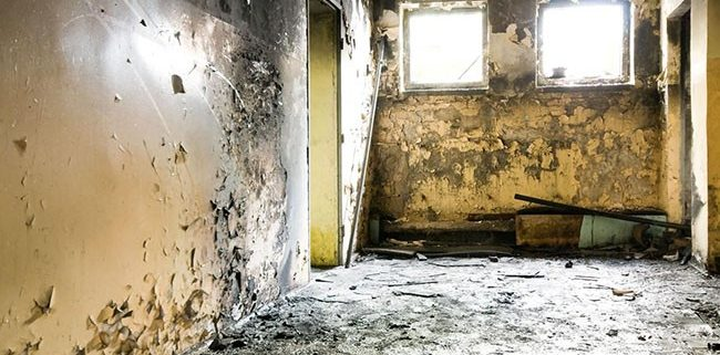 Mold Removal in Idyllwild-Pine Cove, CA (6956)